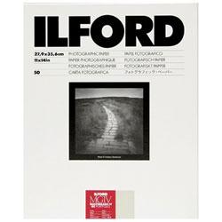 イルフォード PFOLIO44K 11×14 50枚