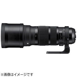 SIGMA 120-300mm F2.8 DG OS HSM (Canon EF) Sports