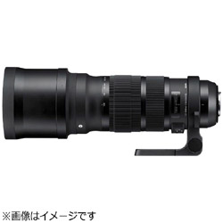 SIGMA 120-300mm F2.8 DG OS HSM (Nikon F) Sports