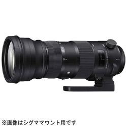 カメラレンズ 150-600mm F5-6.3 DG OS HSM Sports【キヤノンEFマウント】