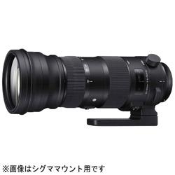 カメラレンズ 150-600mm F5-6.3 DG OS HSM Sports【ニコンFマウント】