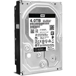WD4005FZBXバルク品 (3.5インチ/4TB/SATA)
