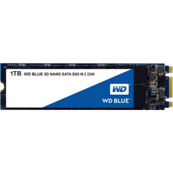WesternDigital(ウエスタンデジタル) WDS100T2B0B 内蔵SSD WD BLUE 3D NAND SATA SSD [M.2 /1TB]