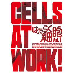 [Used] work cell 1 Limited Edition [Blu-ray]