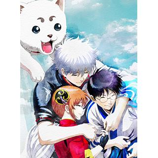 銀魂 THE FINAL 完全生産限定版 DVD