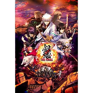 銀魂 THE FINAL 通常版 DVD