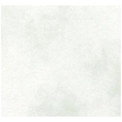 ファンシーペーパー 新アトモス[B5サイズ /10枚] B5-A-03 わさび
