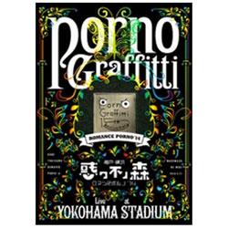 ポルノグラフィティ/神戸・横浜ロマンスポルノ'14 〜惑ワ不ノ森〜 Live in YOKOHAMA STADIUM 初回生産限定盤 BD