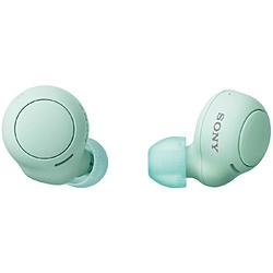 SONY(ソニー) フルワイヤレスイヤホン  アイスグリーン WF-C500 GZ [マイク対応 /ワイヤレス(左右分離) /Bluetooth]