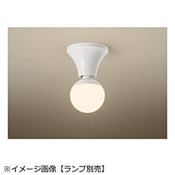 天井直付型・壁直付型 LEDシーリングライト【ランプ別売】 NNN51800