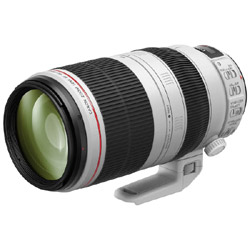 Canon EF 100-400mm F4.5-5.6L IS Ⅱ USM