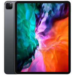 iPad Pro 12.9インチ Liquid Retinaディスプレイ Wi-Fiモデル 1TB - スペースグレイ MXAX2J/A 2020年モデル    [1TB]