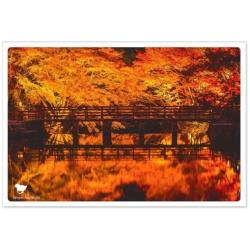日本の絶景ポストカード 『秋』[生産完了品 在庫限り] PAS-POL 岩屋堂公園/愛知 JPC-18