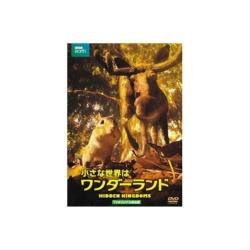 小さな世界はワンダーランド TVオリジナル完全版 【DVD】   [DVD]