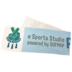 LIFEEGG 【eSports Studio AKIBAオリジナル】 マフラータオル