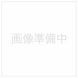 タ-PC22W (タックインデックス/パソプリ/大/無地/ハガキサイズ/9面/10枚)