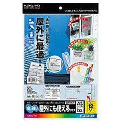 カラーLBP&PPC用 フィルムラベル (A4サイズ・12面・10枚) LBP-OD112T-10