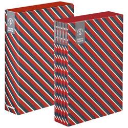 5冊組ソフトボックスアルバム シンプル柄 ストライプ (レッド)5PL-270-33-R