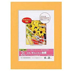 Vカットマット台紙 Digio (2L/オレンジ) DGVM-2L-O