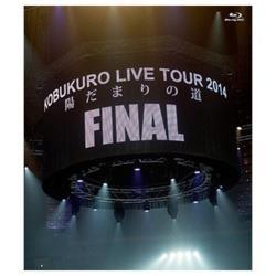 """コブクロ/KOBUKURO LIVE TOUR 2014 """"陽だまりの道"""" FINAL at 京セラドーム大阪 【ブルーレイ ソフト】"""