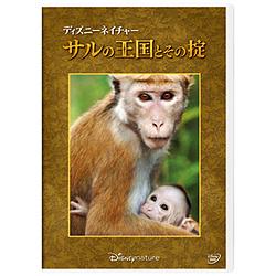 ディズニーネイチャー / サルの王国とその掟 DVD
