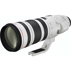 Canon EF 200-400mm F4L IS USM エクステンダー 1.4x