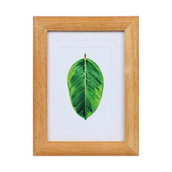 写真立て ゴムの木 チーク PSGMTI