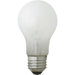 一般電球形 白熱電球 LW100V54W-TM