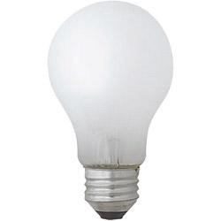 一般電球形 白熱電球 LW100V90W-TM