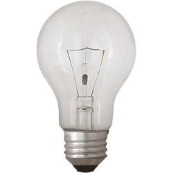 一般電球形 白熱電球 LC110V54W-TM