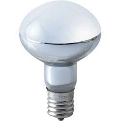 ミニクリプトン球 50Wホワイト KR110V45WR50E17-TM