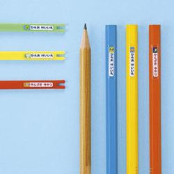 お名前シール・鉛筆 インクジェット LB-NAME19K [はがき /5シート /80面 /マット]