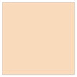 Mr.カラー C111 キャラクターフレッシュ(1)