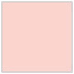 Mr.カラー C112 キャラクターフレッシュ(2)