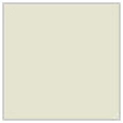 Mr.カラー グレー FS36622 10ml C311
