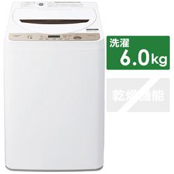 全自動洗濯機  ブラウン系 ES-GE6E-T [洗濯6.0kg /乾燥機能無 /上開き]