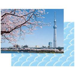 パックンカバーアルバム 2L 東京スカイツリー PKA-711