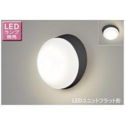 LED屋外ブラケット[防雨型 /要電気工事]【ランプ別売】 LEDB85915 ブラック