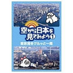 空から日本を見てみよう1 東京湾をグルッと一周 【DVD】   [DVD]