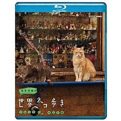 岩合光昭の世界ネコ歩き ソレントとカプリ島