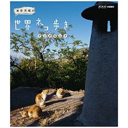 岩合光昭の世界ネコ歩き アンダルシア
