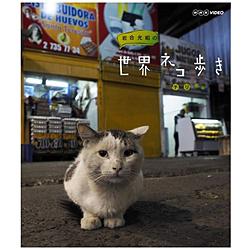 岩合光昭の世界ネコ歩き チリ