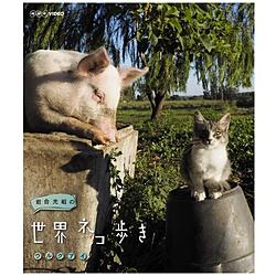 岩合光昭の世界ネコ歩き ウルグアイ