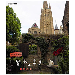 岩合光昭の世界ネコ歩き ベルギー