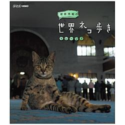 岩合光昭の世界ネコ歩き マレーシア