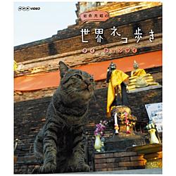 岩合光昭の世界ネコ歩き タイ・チェンマイ