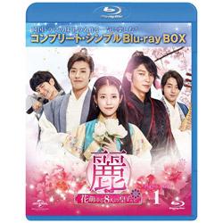 麗<レイ>〜花萌ゆる8人の皇子たち〜 BD-BOX1 <コンプリート・シンプルBD-BOX6,000円シリーズ> BD