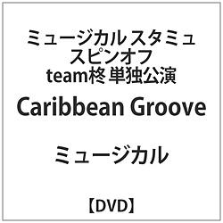 ミュージカル「スタミュ」スピンオフ team柊 「Caribbean Groove」 DVD