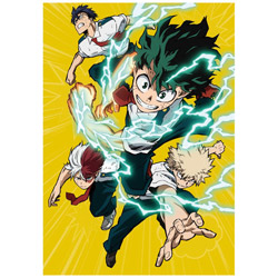 [Used] My Hero Academia 3rd DVD Vol. 1 [DVD]