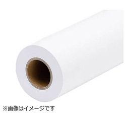 プロフェッショナルフォトペーパー<薄手半光沢>(約841mm幅×30.5m) PXMCA0R13